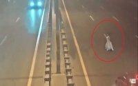 Bakıda 120-lik yolda maşın qadını vurub kənara atdı - DƏHŞƏTLİ VİDEO