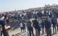"""Minlərlə azərbaycanlı Tərtər istiqamətində təmas xəttinə yürüş etdi: """"Qarabağ Azərbaycanındır!""""- VİDEO"""