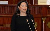 Ombudsmandan ermənilərin hücumları ilə bağlı - Bəyanat